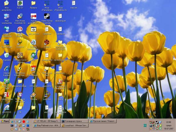 Прикрепленное изображение: my_desktop_20070718_001.JPG