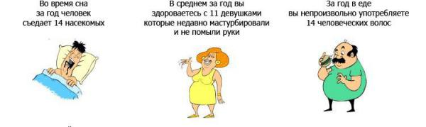 Прикрепленное изображение: facts_01_32.jpg